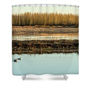 Ankeny Reflections Shower Curtain