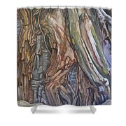 Ankor Temple Trees  Shower Curtain