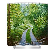 Annecy Forest Afternoon Shower Curtain