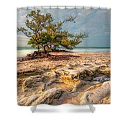 Annes Beach Shower Curtain