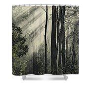 Anothen Shower Curtain