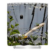 Another Bog Log Shower Curtain