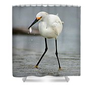 Another Catch Shower Curtain
