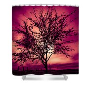 Another Day Shower Curtain