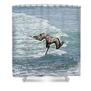 Another Dive Shower Curtain