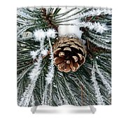 Another Frosty Pine Cone Shower Curtain