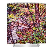 Another Look At Five Mile Mountain Shower Curtain