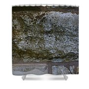 Another Mossy Brick In The Wall Shower Curtain