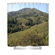 Another Side Of Tam Shower Curtain