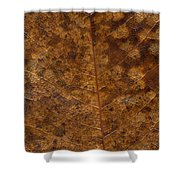 Another Touch Of Fall Shower Curtain
