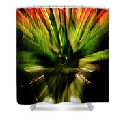 Another Tulip Explosion Shower Curtain