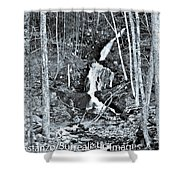 Ansel's Dream Shower Curtain