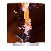 Antelope 28 Shower Curtain