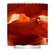 Antelope Aglow Shower Curtain