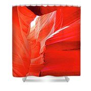 Antelope Butterfly Shower Curtain