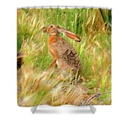 Antelope Jackrabbit Shower Curtain