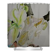 Antelope Skull Pinecones And Lily Shower Curtain