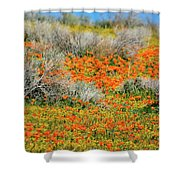 Antelope Valley Poppies Shower Curtain