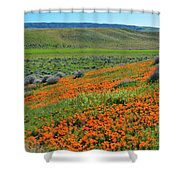 Antelope Valley Poppy Reserve Shower Curtain