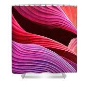 Antelope Waves Shower Curtain