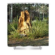 Anthill Shower Curtain