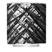 Anthony Skylights Grayscale Shower Curtain