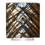 Anthony Skylights Shower Curtain