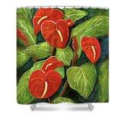Anthurium Flowers #231 Shower Curtain