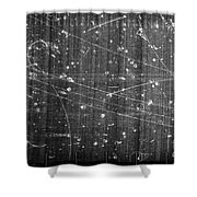 Antineutron, Bubble Chamber Event Shower Curtain