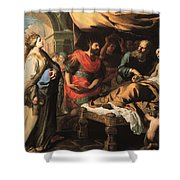 Antiochus And Stratonike Shower Curtain