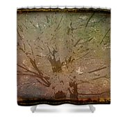 Antique Amber Golden Tree Shower Curtain