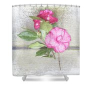 Antique Camellias Square Shower Curtain