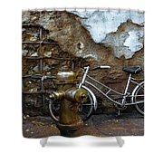 Antique Fire Hydrant 2 Shower Curtain
