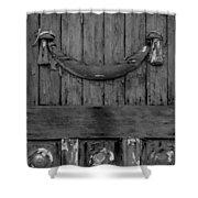 Antique Ornate Wood Panel Shower Curtain