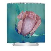 Antique Rose 2 Shower Curtain