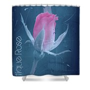 Antique Rose 3 Shower Curtain