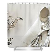 Antique Silver Collection Shower Curtain
