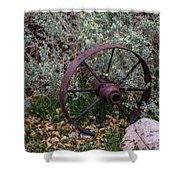 Antique Steel Wagon Wheel Shower Curtain
