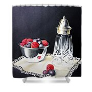 Antique Sugar Shaker Shower Curtain