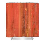 Antique Wall Texture Shower Curtain