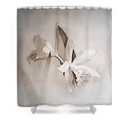 Antique White Orchids Shower Curtain