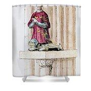 Antoine Des Essarts Shower Curtain by Granger