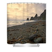 Anxiety Morning On The Ocean Shore. Shower Curtain
