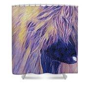 Apache Shower Curtain
