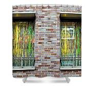 Apartment Window Shower Curtain