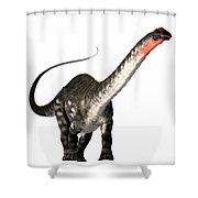 Apatosaurus Profile Shower Curtain