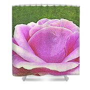 Aphrodite's Rose Shower Curtain