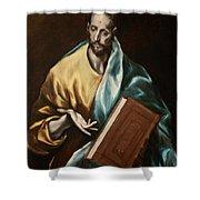 Apostle Saint James The Less Shower Curtain