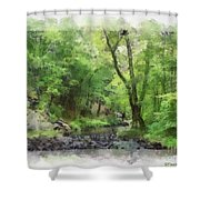 Appalachian Creek Shower Curtain