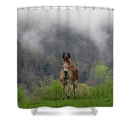 Appalachian Jackass Shower Curtain